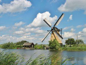 2006 Holanda